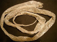 SHEDDED SNAKE SKINS NEEDED