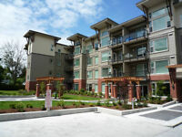 $80 / 1br - 850ft2 -*Bright One Bed And Den At The Crossing (CA)
