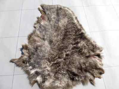 sheepskin leather hide 'Timber Wolf' Toscana thick silky wavy haired