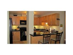 awesome CONDO /great location/ excellent price! Kitchener / Waterloo Kitchener Area image 2