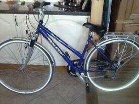 Women's Raleigh Pioneer 160 Bicycle