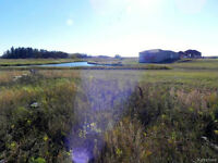 Gorgeous Lake Lot For Sale in Niverville!!