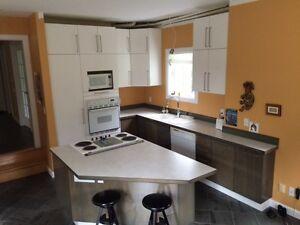 armoires pour cuisine ou garage ou sous sol