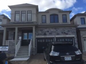 2 bedrm BSMT Apt*Sunny/Bright*Almost New*Mississauga Rd/Steeles