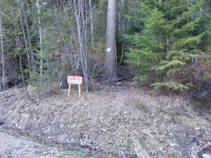 Lot 58 Castle Heights in Anglemont Estates at the Shuswap