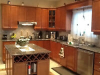 kitchen cabinets WOOD AND RECESS DOORS