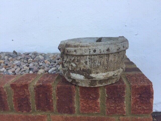 Garden Concrete Flower Pot