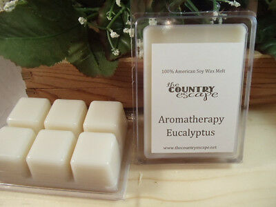 Eucalyptus Essential Oil Scented Soy Wax Clamshell -