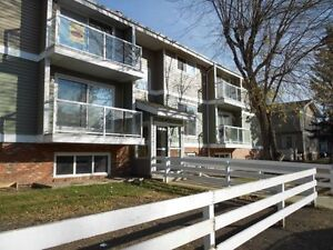 RIVER SIDE MEADOWS Renovated 2  and 1 Bedroom AVAILABLE !