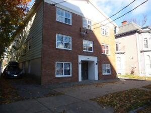 Renovated One Bedroom suites in South End Halifax