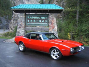 RADIUM HOT SPRINGS B.C MOTEL LOWEST RATES in TOWN !!! APPLE TREE