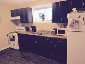 485 LUTZ - NEWLY RENOVATED PROPERTY JUST BEHIND GEORGE DUMONT...