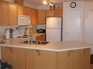 2 Bdrm Modern Condo in the Clareview Area, Steps away from LRT! Edmonton Edmonton Area image 5