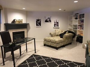 Spacious furnished one bedroom apartment downtown