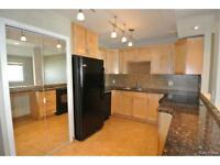 Beautiful 1 Bedroom Condo in St. Boniface