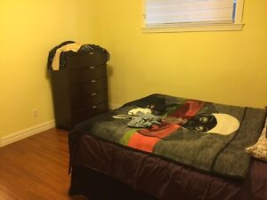 One bedrooom legal suite available immidiately
