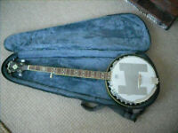 Fender 5 string banjo