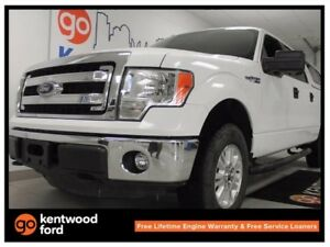 2014 Ford F-150 XLT- We've got you covered!