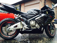 cBR600RR TRIBAL TRADE FOR 250R AND/OR CASH