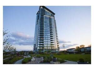 3Bed/2Bath 30th floor High rise Condo in Brentwood Holdom skytra