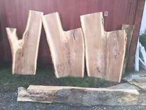 BEAUTIFUL LIVE EDGE!!! VARIETY OF SPECIES! London Ontario image 7