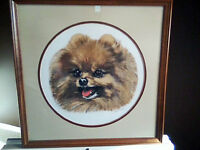 Custom Framed Pomeranian Photo
