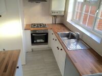 Brand new 2 bedroom house to rent in Hayes