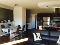 Condo a louer appartement apartment for rent Plateau luxury luxe