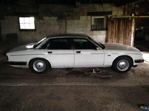 1988 Jaguar for sale