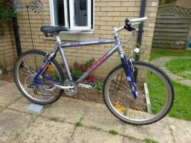 Rare / Collectable Giant ATX Mountain bike. Immaculate condition