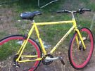 Vintage 1980's  Raleigh Racer