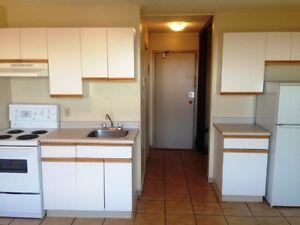 Bachelor Suite -  - Capital Towers - Apartment for Rent Edmonton Edmonton Edmonton Area image 8