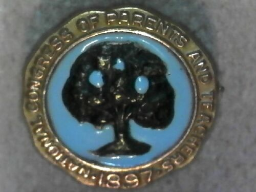 Vintage 10K Yellow Gold Enamel National Congress of Parents and Teachers Pin