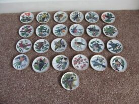 Franklin mint songbirds of the world mini plates