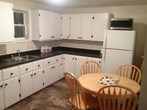 3 bedroom apartment between Clarenville and Bullarm
