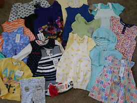 Baby girl clothes BNWT 0-18 months