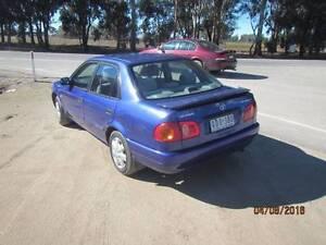2000 Toyota Corolla Sedan Yarrawonga Moira Area Preview
