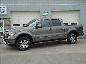 "2011 Ford F-150 FX4 w. ONLY 42,830 KM""S"