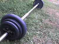 46 lb 21 kg Metal Dumbbell & Barbell Weights