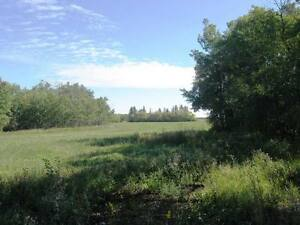 116 Acres Near Camrose Edmonton Edmonton Area image 6