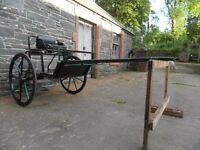 Single Pony Exercise / Marathon Carriage / Cart