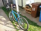 Mat Blue Mountain Bike