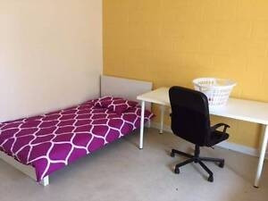 SOUTH PLYMPTON Share Room for FEMALE Student or Traveller South Plympton Marion Area Preview