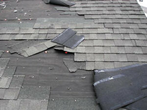 Roof/Shingles/Gutter Replacements and Repairs- Low prices