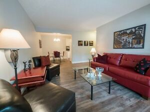 RENOVATED, FULLY FURNISHED Downtown 1BR!!!
