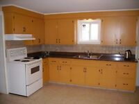 Large 3 bdrm Up and down duplex for rent ,Heat & Power included!