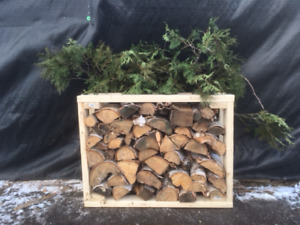 Birch Fire Wood Bundle Holiday  Sale Call Paul (416) 899-0578
