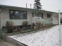 1603-43 Avenue Basement Suite for Rent