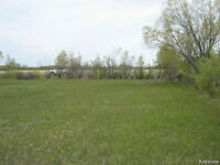 """""""Teulon"""" Vacant Building Lots 100' X 200' 3 Avail. ONLY $24,900"""