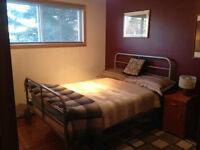 Bedroom for rent near MRU in glamorgan